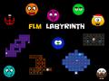 FLM Labyrinth