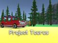 Project Taurus