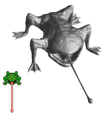 Frog Boss
