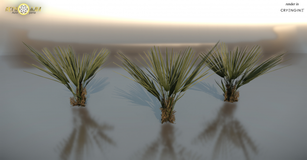 Palmbush small
