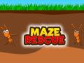 Maze Rescue