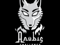 Anubis Challenge