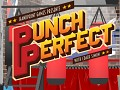 Punch Perfect: Boxing Training