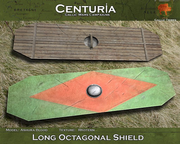 Long Octagonal Shield