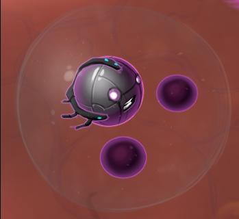 neutrophil 5