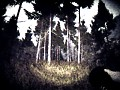 Slender: The Arrival - MH Edition