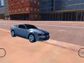 Rally Car Simulator
