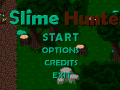 Slime Hunter