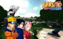 Team 7 Splash