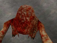 Zombie Edition