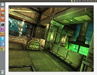 Unity 4 - Unity3d game running on Linux