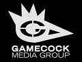 Gamecock Media Group