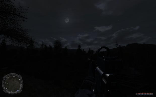Under the dim moonlight