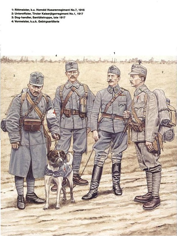 austro-hungarian infantry 1914-18 image