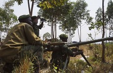 African bush soldiers