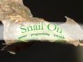 Snail On