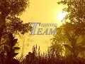 T'Team