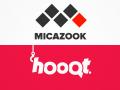 Micazook