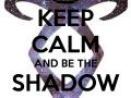The Shadow Hunters