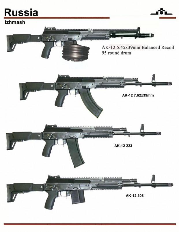 AK-12 variants