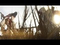 New Assassin's Creed 3 - E3 Official Trailer!
