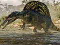 Spinosaurus Fan's