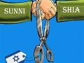 Alliance of sunni and shia brothers