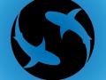 Spotted Shark Studio