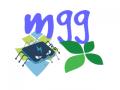 Medium Graphics Gaming, LLC