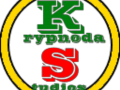 Programmer for Krypnoda Studios