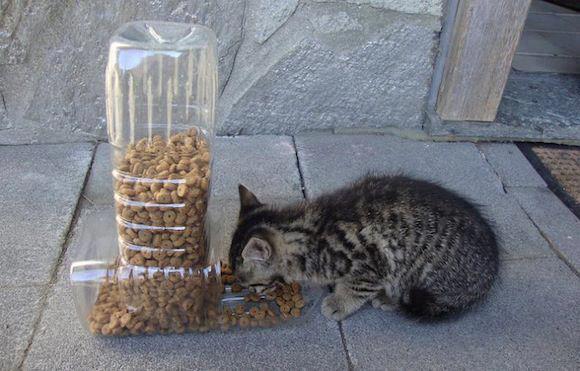 Кормушка своими руками для кота