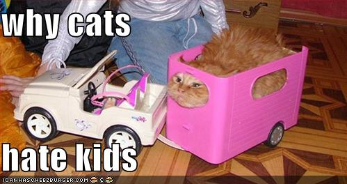 Why Cats Hate Kids Image Cat Lovers