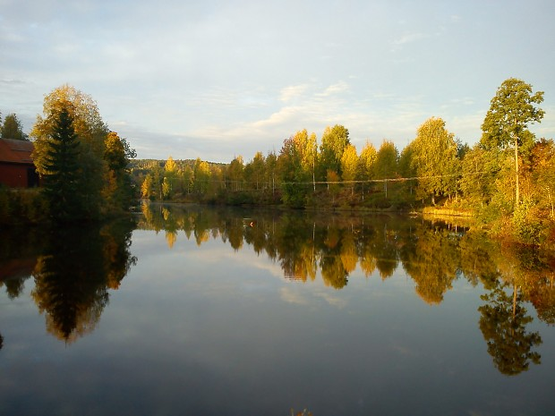 Sweden / Autumn / 2013