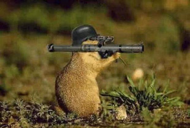 New Rocket RAT