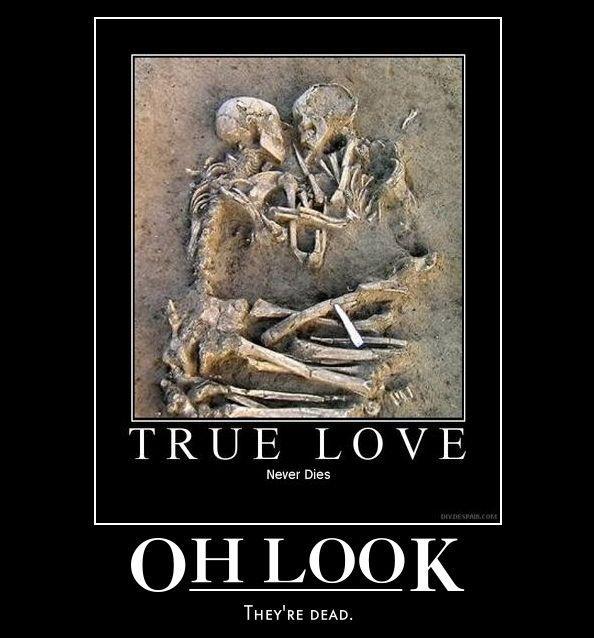 True Love Image Humor Satire Parody Mod Db