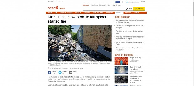 Blowtorch vs spider