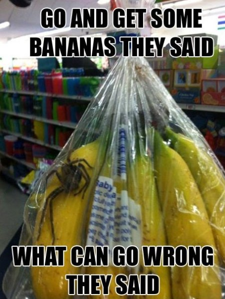Don't get your own bananas..