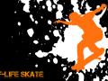 Half-Life Skate Team