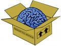 Brainbox.cc