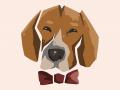 Desert Beagle