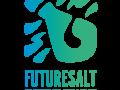 Futuresalt Entertainment