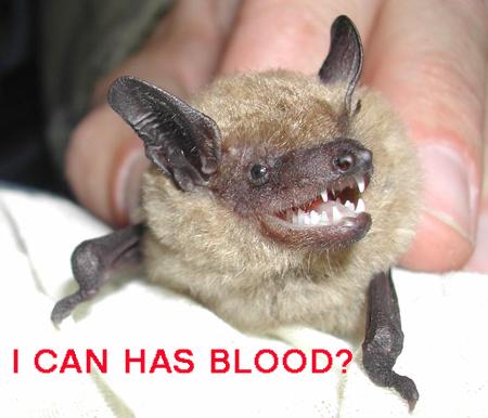 LOL bats