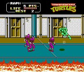 Teenage Mutant Ninja Turtle 2
