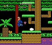 "Who remembers? ""Adventure Island"""