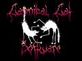 Cannibal Cat Software
