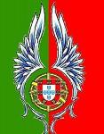 Portuguese Flag Concept 2