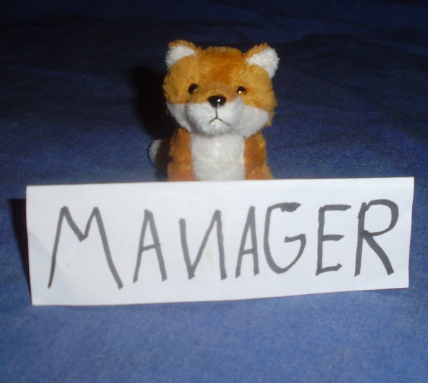 Your new manager