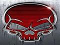 Red Skull Team