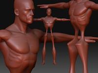 Loomis - 45 min quick sculpting
