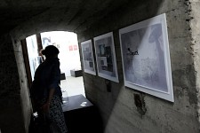 Project Growth Exhibition